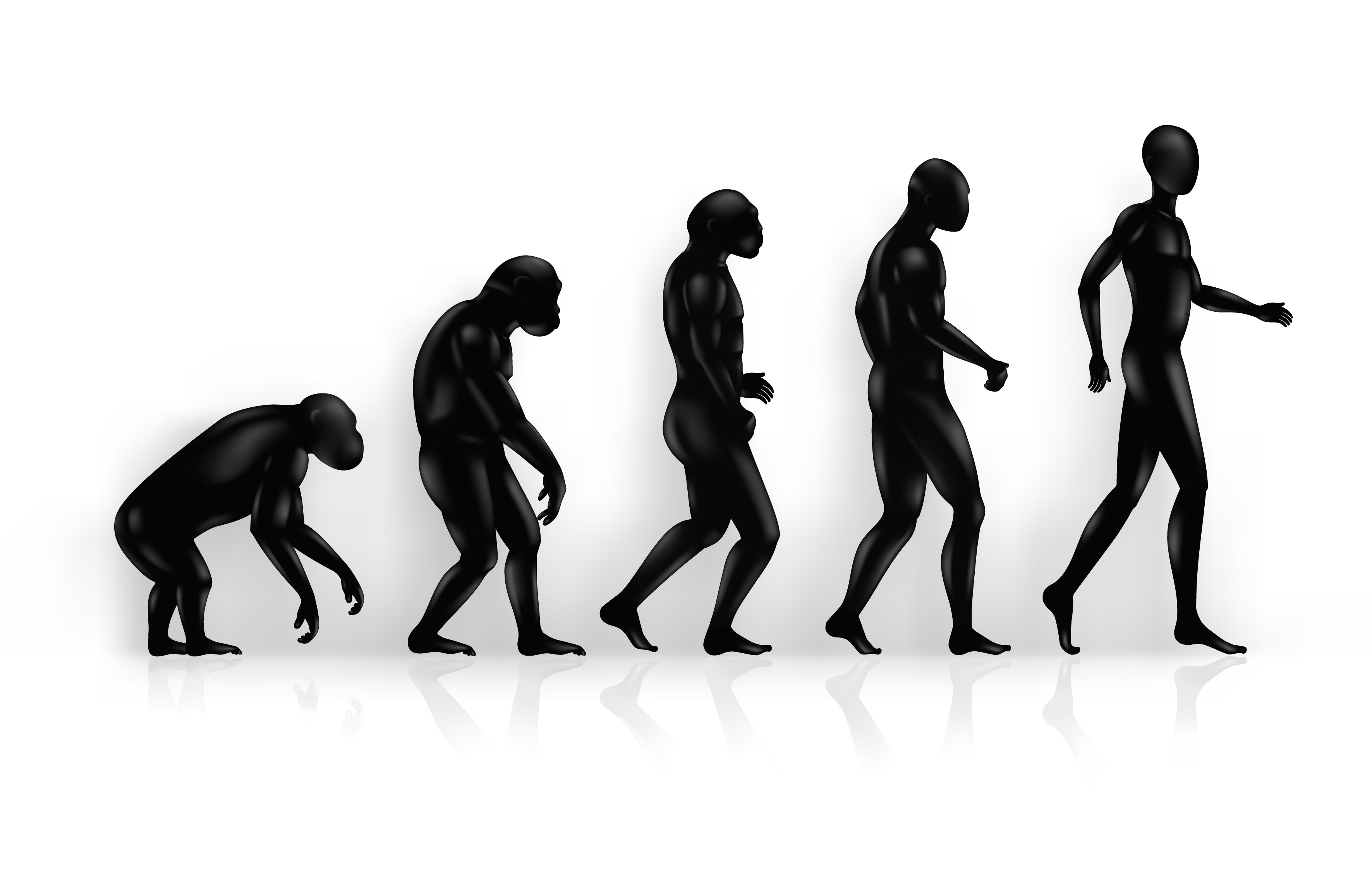 cloning the next step to mankinds evolution