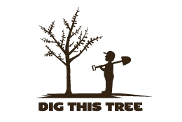 Dig This Tree logo